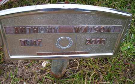 WATSON, ANTHONY - Ouachita County, Arkansas | ANTHONY WATSON - Arkansas Gravestone Photos