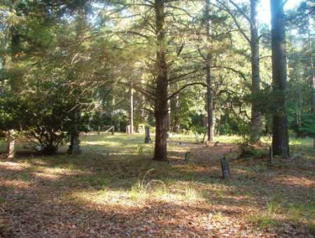 *WHITEFIELD, CEMETERY - Ouachita County, Arkansas | CEMETERY *WHITEFIELD - Arkansas Gravestone Photos