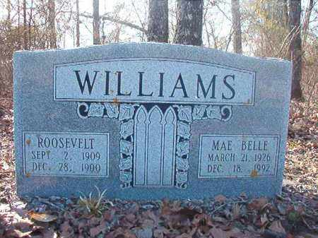 WILLIAMS, ROOSEVELT - Ouachita County, Arkansas | ROOSEVELT WILLIAMS - Arkansas Gravestone Photos