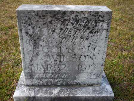 WILSON, INFANT DAUGHTER - Ouachita County, Arkansas   INFANT DAUGHTER WILSON - Arkansas Gravestone Photos