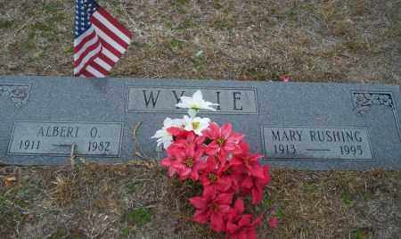 WYLIE, MARY - Ouachita County, Arkansas | MARY WYLIE - Arkansas Gravestone Photos