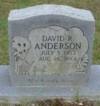 ANDERSON, DAVID R - Perry County, Arkansas | DAVID R ANDERSON - Arkansas Gravestone Photos
