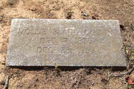 BLAND COLVIN, MOLLIE - Perry County, Arkansas | MOLLIE BLAND COLVIN - Arkansas Gravestone Photos