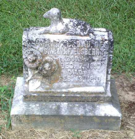 ELSBERRY, MARY L. - Perry County, Arkansas | MARY L. ELSBERRY - Arkansas Gravestone Photos