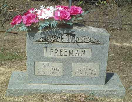 FREEMAN, SAUL - Perry County, Arkansas | SAUL FREEMAN - Arkansas Gravestone Photos