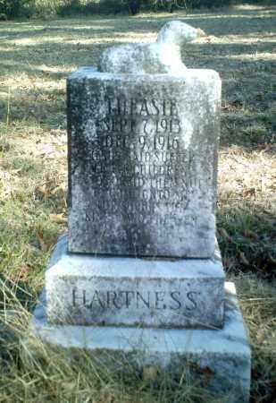 HARTNESS, THEASIE - Perry County, Arkansas | THEASIE HARTNESS - Arkansas Gravestone Photos