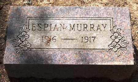 MURRAY, ESPIAN - Perry County, Arkansas | ESPIAN MURRAY - Arkansas Gravestone Photos
