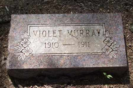 MURRAY, VIOLET - Perry County, Arkansas | VIOLET MURRAY - Arkansas Gravestone Photos