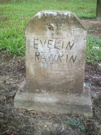 RANKIN, EVELIN - Perry County, Arkansas | EVELIN RANKIN - Arkansas Gravestone Photos