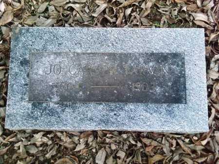 TARVIN, JOSEPHINE - Perry County, Arkansas | JOSEPHINE TARVIN - Arkansas Gravestone Photos