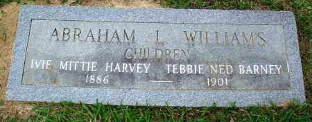 WILLIAMS, ABRAHAM L - Perry County, Arkansas   ABRAHAM L WILLIAMS - Arkansas Gravestone Photos