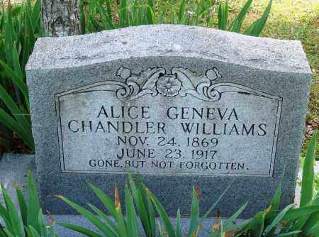 CHANDLER WILLIAMS, ALICE GENEVA - Perry County, Arkansas | ALICE GENEVA CHANDLER WILLIAMS - Arkansas Gravestone Photos