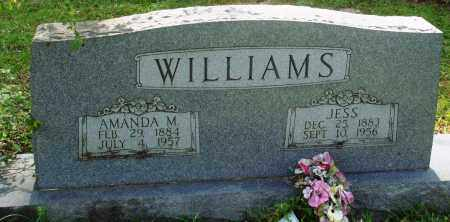 WILLIAMS, AMANDA M - Perry County, Arkansas | AMANDA M WILLIAMS - Arkansas Gravestone Photos
