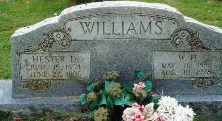 WILLIAMS, HESTER D - Perry County, Arkansas | HESTER D WILLIAMS - Arkansas Gravestone Photos