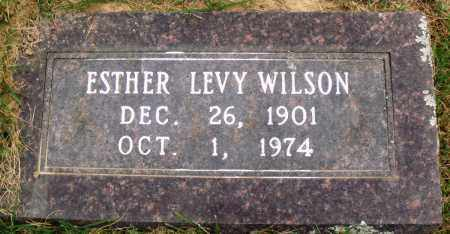 WILSON, ESTHER LEVY - Perry County, Arkansas | ESTHER LEVY WILSON - Arkansas Gravestone Photos