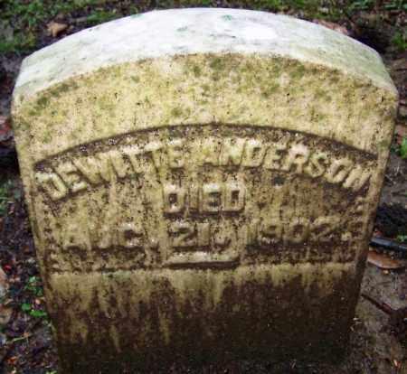 ANDERSON (VETERAN CSA), DEWITTE - Phillips County, Arkansas | DEWITTE ANDERSON (VETERAN CSA) - Arkansas Gravestone Photos