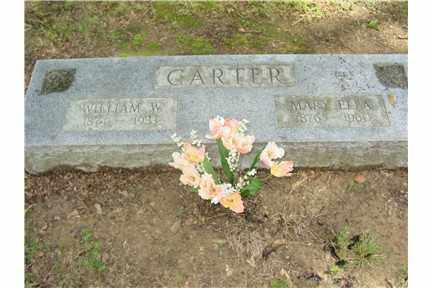 CARTER, MARY ELLEN - Phillips County, Arkansas | MARY ELLEN CARTER - Arkansas Gravestone Photos