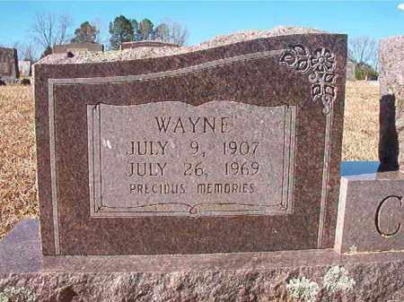 CASH, WAYNE - Pike County, Arkansas | WAYNE CASH - Arkansas Gravestone Photos