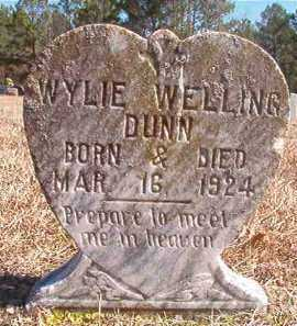 DUNN, WYLIE WELLING - Pike County, Arkansas | WYLIE WELLING DUNN - Arkansas Gravestone Photos