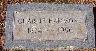 HAMMONS, CHARLIE - Pike County, Arkansas | CHARLIE HAMMONS - Arkansas Gravestone Photos