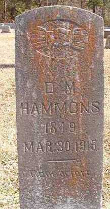 HAMMONS, D M - Pike County, Arkansas | D M HAMMONS - Arkansas Gravestone Photos