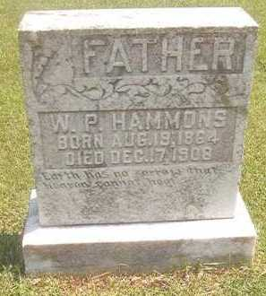 HAMMONS, W P - Pike County, Arkansas | W P HAMMONS - Arkansas Gravestone Photos
