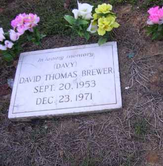 BREWER, DAVID THOMAS - Poinsett County, Arkansas | DAVID THOMAS BREWER - Arkansas Gravestone Photos
