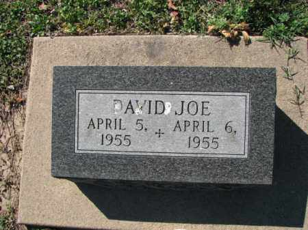 BARTON, DAVID JOE - Poinsett County, Arkansas | DAVID JOE BARTON - Arkansas Gravestone Photos
