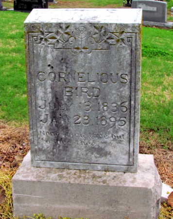 BIRD, CORNELIUS - Poinsett County, Arkansas | CORNELIUS BIRD - Arkansas Gravestone Photos