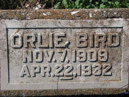 BIRD, ORLIE - Poinsett County, Arkansas | ORLIE BIRD - Arkansas Gravestone Photos