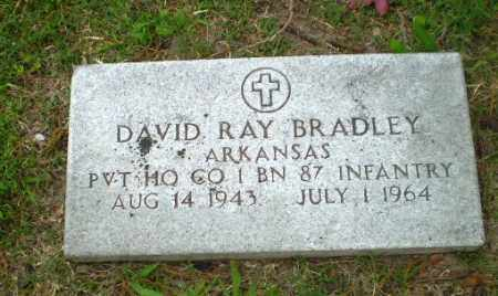BRADLEY (VETERAN), DAVID RAY - Poinsett County, Arkansas | DAVID RAY BRADLEY (VETERAN) - Arkansas Gravestone Photos
