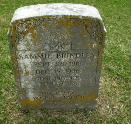 BRINDLEY, SAMMIE - Poinsett County, Arkansas | SAMMIE BRINDLEY - Arkansas Gravestone Photos