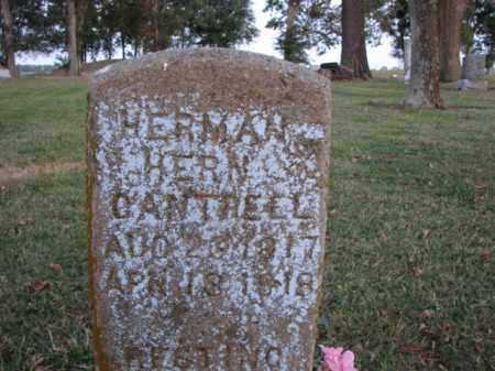 CANTRELL, HERMAN HERN - Poinsett County, Arkansas | HERMAN HERN CANTRELL - Arkansas Gravestone Photos