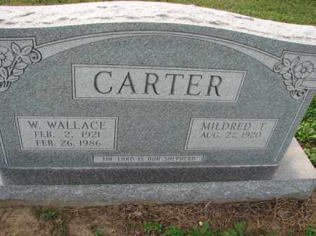 CARTER, W. WALLACE - Poinsett County, Arkansas | W. WALLACE CARTER - Arkansas Gravestone Photos