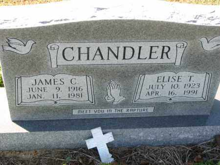 CHANDLER, ELISE T. - Poinsett County, Arkansas | ELISE T. CHANDLER - Arkansas Gravestone Photos