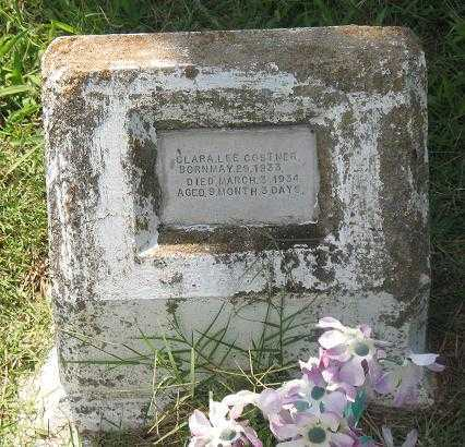 COSTNER, CLARA LEE - Poinsett County, Arkansas | CLARA LEE COSTNER - Arkansas Gravestone Photos