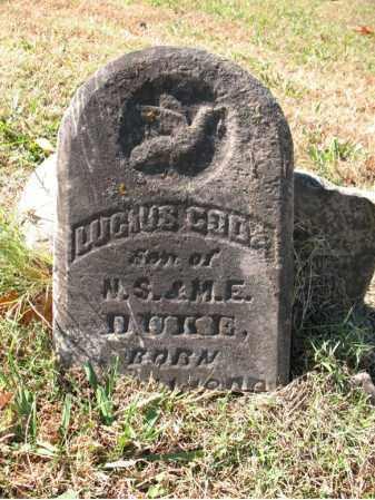 DUKE, LUCIUS GODA - Poinsett County, Arkansas | LUCIUS GODA DUKE - Arkansas Gravestone Photos