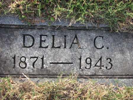 EAST, DELIA C. - Poinsett County, Arkansas | DELIA C. EAST - Arkansas Gravestone Photos