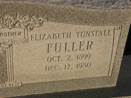 FULLER, ELIZABETH - Poinsett County, Arkansas | ELIZABETH FULLER - Arkansas Gravestone Photos