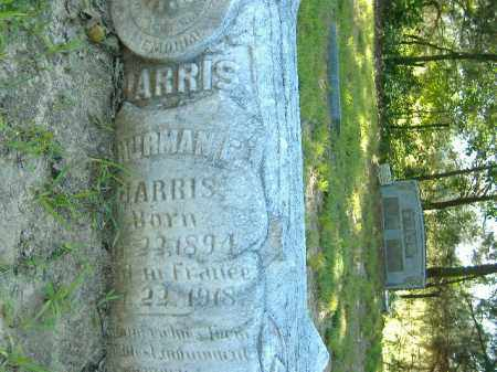 HARRIS, HERMAN F. - Poinsett County, Arkansas | HERMAN F. HARRIS - Arkansas Gravestone Photos