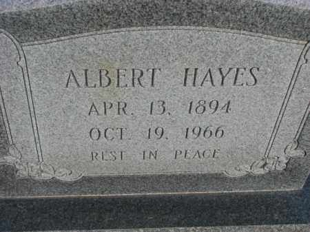 HAYES, ALBERT - Poinsett County, Arkansas | ALBERT HAYES - Arkansas Gravestone Photos
