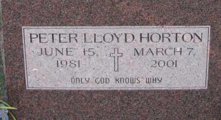 HORTON, PETER - Poinsett County, Arkansas | PETER HORTON - Arkansas Gravestone Photos