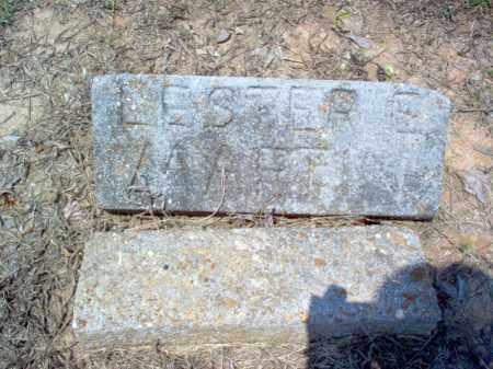 MARTIN, LESTER E - Poinsett County, Arkansas | LESTER E MARTIN - Arkansas Gravestone Photos