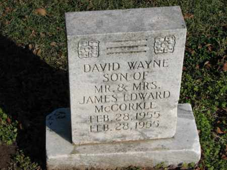 MCCORKLE, DAVID WAYNE - Poinsett County, Arkansas | DAVID WAYNE MCCORKLE - Arkansas Gravestone Photos