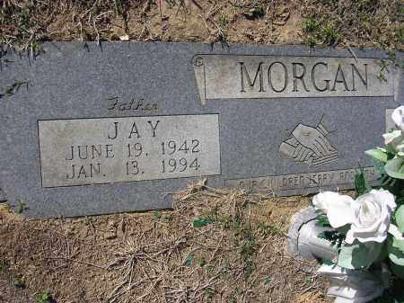 MORGAN, JAY - Poinsett County, Arkansas | JAY MORGAN - Arkansas Gravestone Photos