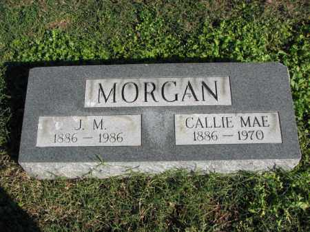 MORGAN, CALLIE MAE - Poinsett County, Arkansas | CALLIE MAE MORGAN - Arkansas Gravestone Photos