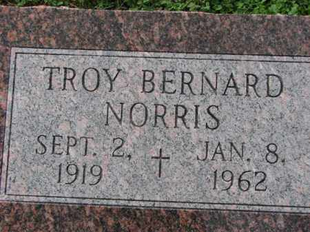 NORRIS, TROY BERNARD - Poinsett County, Arkansas | TROY BERNARD NORRIS - Arkansas Gravestone Photos