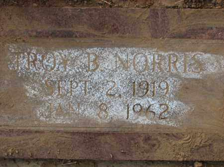 NORRIS, TROY B. - Poinsett County, Arkansas | TROY B. NORRIS - Arkansas Gravestone Photos