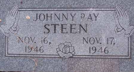 STEEN, JOHNNY RAY - Poinsett County, Arkansas | JOHNNY RAY STEEN - Arkansas Gravestone Photos