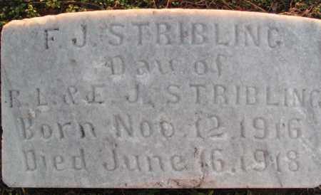 STRIBLING, F. J. - Poinsett County, Arkansas | F. J. STRIBLING - Arkansas Gravestone Photos